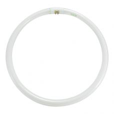 Лампа люминесцентная кольцевая КЛЛ T6 circle  tube 40W